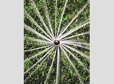 Rain Bird 12SA Mini Rotor Sprinklers