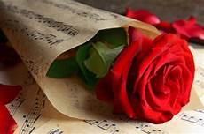 Flower Wallpaper Song by In Notes Flowers Nature Background
