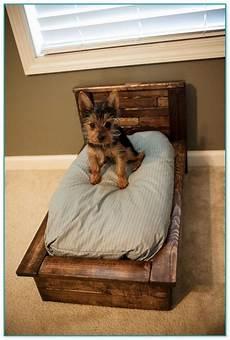 amazing medium sized beds