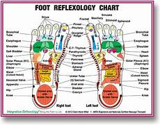 Norman Reflexology Foot Chart Pictures Of Feet Vacation Selfies Lynne Meredith Golodner