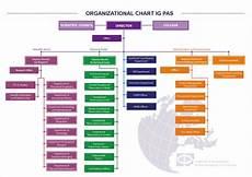 Https Myadvocateaurora Org Chart Organizational Chart Structure Igf Pan