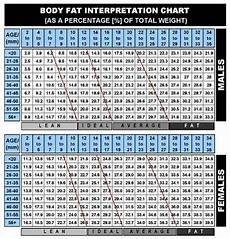 Army Body Fat Chart Bmr And Why You Need To Know Jesse N Petty