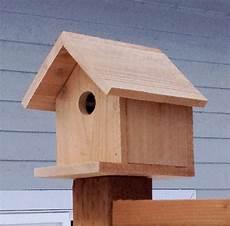 build a cedar birdhouse for 2 white