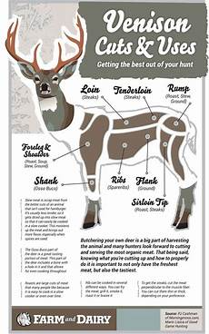Meat Processing Chart Venison Cuts And Uses Infographic Farm And Dairy