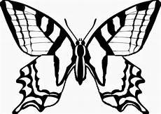 Malvorlagen Zum Ausdrucken Schmetterling Schmetterling Malvorlagen