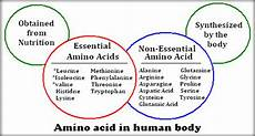 Amino Acid Benefits Chart Nutrition 101 Protein Thinky Bites