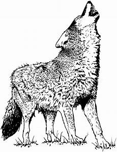 wolf howling moon coloring pages and print for free