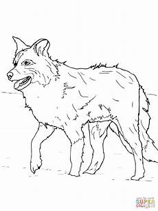 scotch sheep or border collie coloring page free