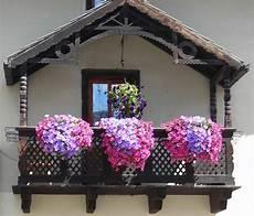 piante da davanzale pin di cristina bartolini su finestre e balconi