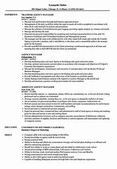 Collection Resume Examples Mediator Resume Examples Best Resume Examples