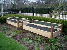 two raised garden beds with rabbit railing 3x8x2
