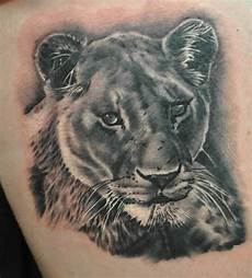 Lion And Lioness Designs Lioness Designs Ideas And Meaning Tattoos For You
