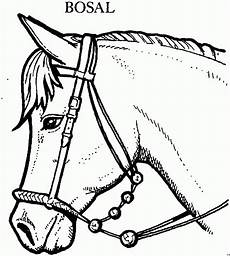 Ausmalbilder Malvorlagen Pferde Window Color Malvorlagen Pferde Gratis Inspirierend