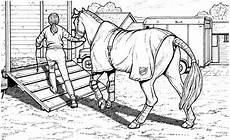 Malvorlagen Uhr Pferd Ausmalbilder Schleich Pferdehof Vorlagen Zum Ausmalen