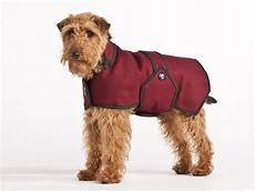 dogs coats best coats in the uk 2013