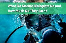 What Do Wildlife Biologists Do What Do Marine Biologists Do And How Much Do They Earn