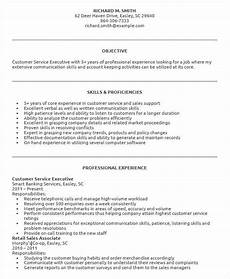 Resume For Customer Service Executive Free 34 Executive Resume Templates In Pdf Ms Word