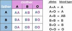 Genotype Chart For Blood Types Who Is An Example Of A Heterozygous Person Quora