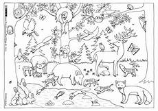 Ausmalbilder Tiere Herbst Natur Wald Herbst Tiere Malvorlage Kindergarten Natur
