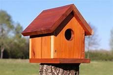 bird house plans 20 free beginner birdhouse designs