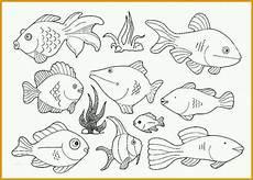 spektakul 228 r fisch vorlage zum ausschneiden sch 246 nste fisch