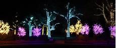 Darden Tn Christmas Lights Holiday Lights At Cheekwood Nashville On The Move