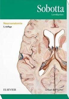 Neuroanatomie Lernkarten Sobotta Lernkarten Buecher De