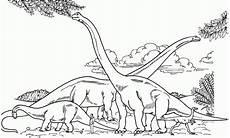 Dinosaurier Brachiosaurus Ausmalbilder Dibujos De Dinosaurios Para Pintar Dibujos De Dinosaurios