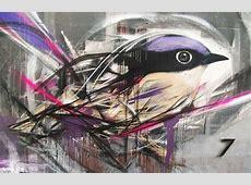 Impressive graffiti birds by a young Brazilian artist