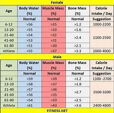 Bone Mass Chart Kg Everything About Muscle Mass Percentage With Charts