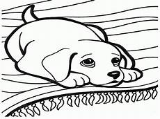 faithful animal 20 coloring pages free printables