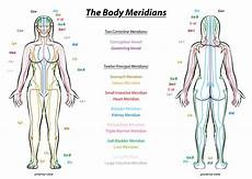 Chinese Body Chart Acupuncture Meridians What Qigong Students Need To Know