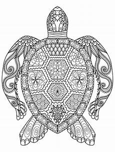 Malvorlagen Tieren Coloring Pages Animals Best Coloring Pages For