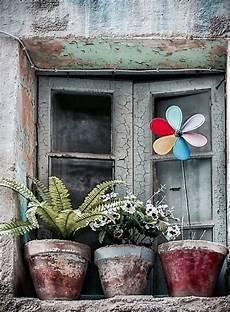 fioriere per davanzale finestra pin di nicoletta s su porte finestre porte antiche