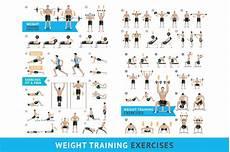 Weight Training Exercises Chart Dumbbell Exercises Weight Training Illustrations