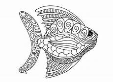Malvorlagen Tieren Animal Coloring Pages For Adults Best Coloring Pages For