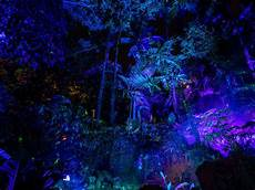 Miami Botanical Gardens Light Show 14 Places To See Christmas Lights In Miami And Broward Mapped