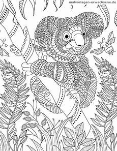 Ausmalbilder Erwachsene Malvorlage Koala F 252 R Erwachsene Kostenlose Ausmalbilder