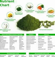 Moringa Chart Moringa Protein Amp Energy Bar All About Moringa Vegalicious
