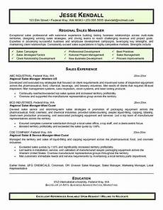 Regional Manager Resume Examples 14 15 Sales Director Resume Example Southbeachcafesf Com