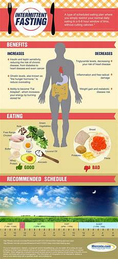 Intermittent Fasting Chart Intermittent Fasting Beginners Guide Video Instructions