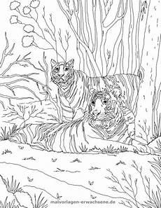 Tiger Malvorlagen Zum Ausdrucken Kostenlos Malvorlage Tiger Tiere Kostenlose Ausmalbilder