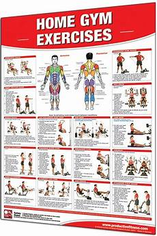 Workout Chart For Gym Pdf This Poster Features 20 Of The Most Common Home Gym