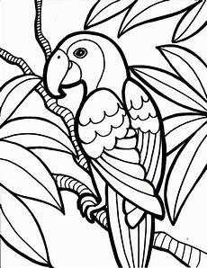 malvorlagen kinder vorschule vorschule kostenlos druckbare papagei malvorlagen f 252 r