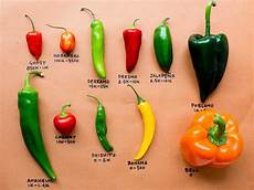 Pepper Chart From The Competition To Your Kitchen Chile Pepper Cheat