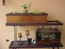 Aquaponics Setup Design Build A Basic Aquaponics System