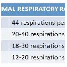 Normal Respiration Rate For Adults Chart The Normal Respiratory Rates Table Shows The Respiratory