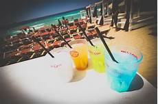 bicchieri infrangibili bicchieri monouso bicchieri in policarbonato