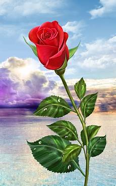 flower phone live wallpaper magic touch flowers play softwares