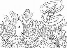 malvorlagen zum drucken ausmalbild algen kostenlos 1